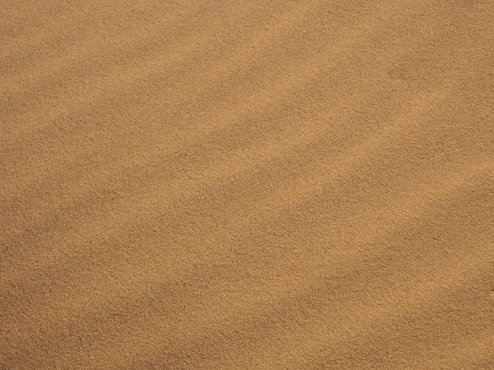 太陽の光が砂の粒に反射し、キラキラと波のように光輝くサウンドベージュは、儚さと強さを感じさせる色味です。落ち着いた色ながら他の色に負けない存在感があり、輝かしいメイクが完成します。