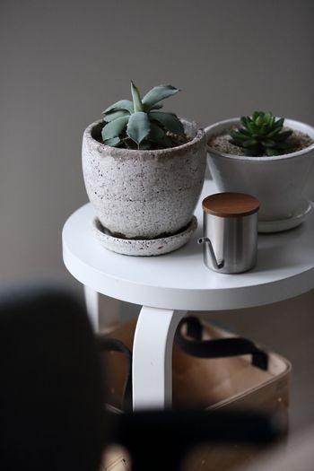 白いアルテックのスツールに置かれた二つの鉢はシンプルなのに、うっとりするほど趣がありますね。小さな水差しもインテリアにぴったり。