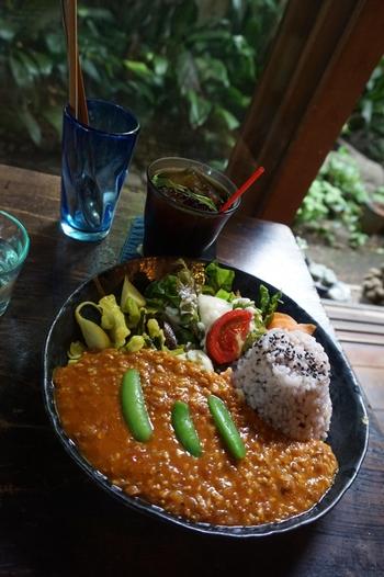 こちらは「酒粕カレー」。その名の通り、酒粕とトマトの酸味がきいた、元気になれる一品です。旬の野菜も一緒にいただけますよ。