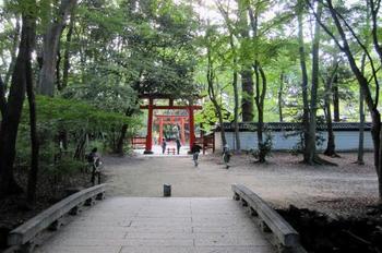 河合神社へは、表参道から、糺の森を流れる「瀬見の小川」に架かる橋を渡ります。