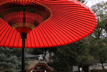 京都ならではの風情や甘味が味わえる、茶寮や和菓子店も周辺に点在しています。今記事では、一日ゆったりと過ごせる「下鴨神社」とその周辺の和菓子店と茶寮を紹介します。京都へ足を運ぶのなら、ぜひ「下鴨神社」へ足を運んでみましょう。