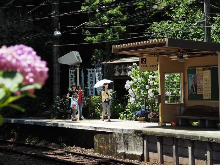「箱根湯本」には、早雲寺や阿弥陀寺、深沢銭洗弁財天といった神社仏閣、玉簾の滝や湯坂山といった自然景勝地、旧東海道の石畳といった史跡が点在しています。宿泊して時間があるのなら、豊かな自然を味わいながら、名所やスポットも訪ね歩くことが出来ます。 【箱根湯本駅の隣駅「塔ノ沢駅」にある「深沢銭洗弁財天」。この界隈へは、箱根湯本から徒歩やバスで訪ねられる。】