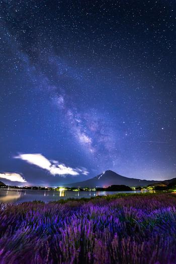 ハーブフェスティバル開催中は、夜の河口湖でも素晴らしい眺望が待っています。空気が澄んだ高原の夜空には、星々が大きく煌めき、日中とは異なる幻想的な雰囲気が漂います。