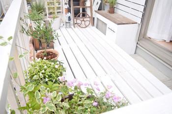 ベランダでガーデニングをするのもおすすめです。植物に水やりをするついでに、ベランダの床にも水を撒きましょう。気化熱で涼しく感じられます。