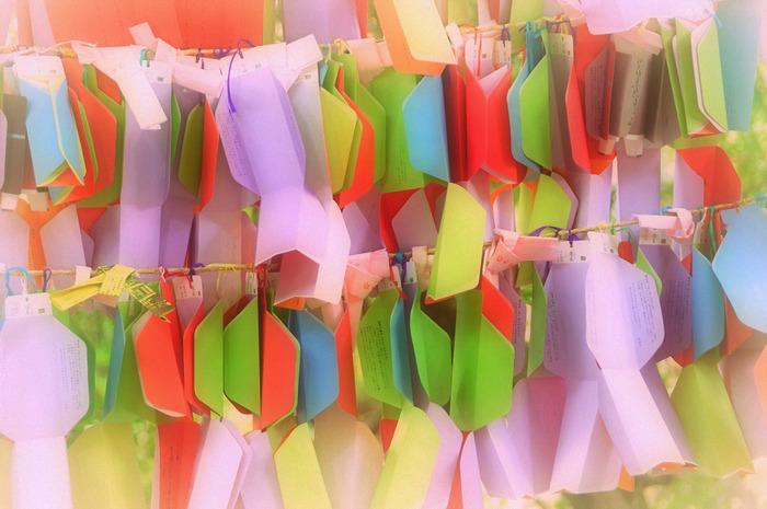 【「下鴨神社」のおみくじは、色とりどり 】