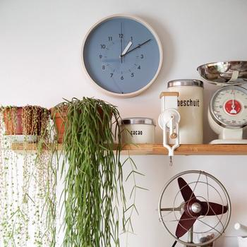 つる性のグリーンはゆらゆらと動きが楽しめるだけでなく、存在感も抜群のインテリアにおすすめな観葉植物。本棚やシェルフなどにさりげなくのせて飾ったり、この写真のようなキッチングッズの片隅に置いても素敵です。