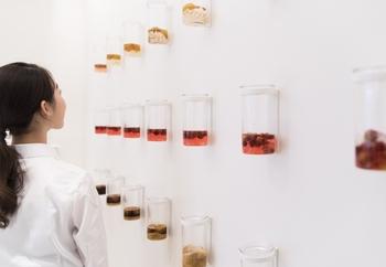 壁には梅シロップのディスプレイが。まるで実験室の資料のようですね。これから体験するオリジナルの梅シロップや梅酒作りに期待が高まりそう。