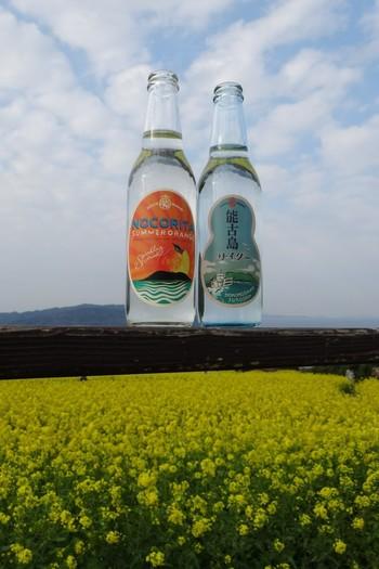 そんな能古島のご当地サイダーは2種類。ラベルも味もノスタルジックな「能古島サイダー」と、島の特産品である甘夏果汁が入った「ノコリータ」。能古島サイダーのラベルのひょうたん型は、能古島の形に合わせられているんだとか。