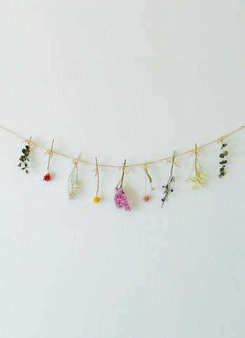 他の草花のドライと組み合わせてガーランドにするのも可愛いですね。お部屋全体がほっこりとする癒し空間に変身です♪