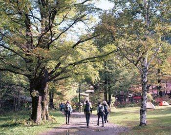 早朝に上高地に到着した人や宿泊者の人の中には「なるべくたくさん上高地を歩きたい!」という人もいますよね。 そんな方々には、河童橋からスタートして明神池を経由したら、上高地の奥座敷・徳沢で引き返す4時間程度のハイキングコースを紹介します。  河童橋→明神池→徳沢→明神池→河童橋(歩行時間 約4時間)