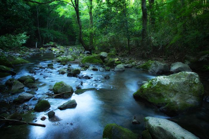 パワースポットは、「大地の力が感じられる場所」「草木が健やかに育ちエネルギーに満ち溢れる場所」または「神仏が宿り神聖な気が漂う場所」のことだといわれています。  パワースポットを訪れることで、日頃のストレスや疲れが抜けて、元気なパワーをいただくことができます。また、日常とは違う雰囲気に身を置くことで、心と体のリフレッシュにもつながります。
