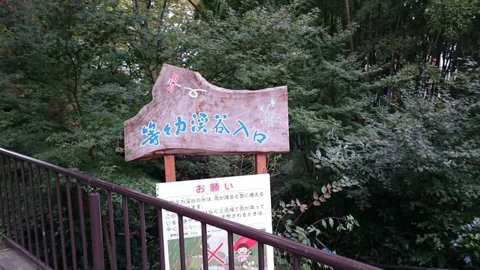 東急大井町線の等々力駅から歩いて5分ほど、大通りからほど近いところに突然現れる緑豊かなスポット「等々力渓谷」は、23区内で唯一の渓谷として、東京都の名勝に指定されています。渓谷の入り口にある階段を下りると、草木の香りを強く感じられます。