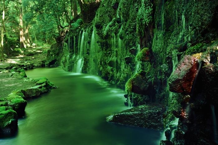苔むした岩をゆるやかに流れる滝は、まるで絵画のような光景。静かに眺めていると、心が洗われて気持ちのいいパワーをいただくことができます。ハイキングコースの一部なので、ヒールなどは避け、歩きやすい靴で訪ねてみて下さいね。