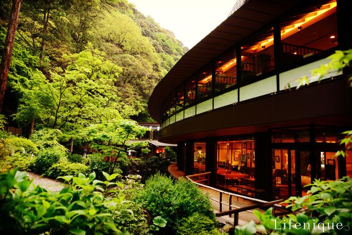 箱根湯本にある人気のホテル・天成園。連日多くの観光客で賑わうこちらの敷地内には、「延命の水」が流れ落ちるパワースポット・玉簾の滝があります。