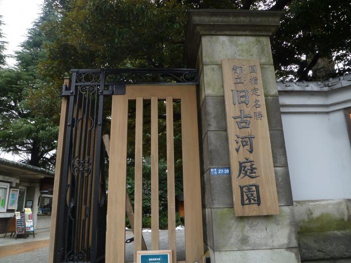 JR山手線の駒込駅から歩いて約15分、立派な門が見えてきたら「旧古河庭園」の入り口です。1919年(大正8年)に古河財閥の子どもである古河虎之助男爵の邸宅として建てられました。現在は、国指定の文化財のひとつなんですよ。