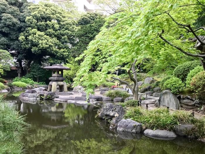 """和洋のコントラストが美しい敷地には、日本庭園も。水をたたえる池に涼しさを感じます。作庭は、平安神宮や円山公園など、国の名勝に指定された庭園を手掛けた小川治兵衛氏によるもの。こちらの池は""""心字池""""と呼ばれ、上から見ると""""心""""の字を崩した形になっているそう。"""
