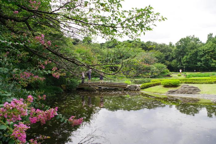 """東京の自然豊かな水辺を巡る。""""涼""""を感じる「大人さんぽ」のすすめ"""