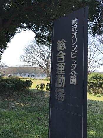体を動かしたいという方は「都立駒沢オリンピック公園」がおすすめです。駒沢大学駅からゆっくり歩いて20分、広々とした施設に思わず深呼吸したくなります。