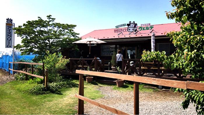 あれ?東京のアイスクリームショップの紹介じゃないの?そんな声が聞こえてきそうな、牧歌的な光景が広がる「アイス工房ヴェルデ」は、東京都武蔵村山市にあります。