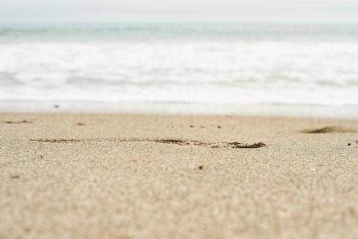 今は勢いがあるから流されるべき時、今は一か所に留まって力を溜めておく時期など、流れにも波があります。今だという時に大きな波に乗れるよう、常に整えておきたいものですね。