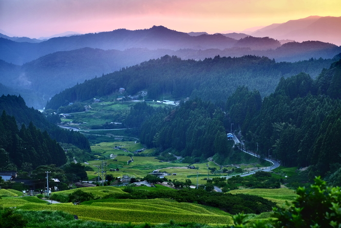 四谷の千枚田は、鞍掛山の南西傾斜地の標高420メートルから標高220メートルの場所に敷かれた棚田です。標高差約200メートルにも及ぶ四谷千枚田は、棚田を取り囲む周囲の山間風景の美しさを引き立てています。