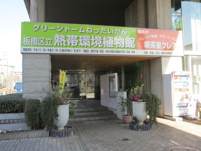 都営三田線高島平駅から徒歩7分のところにある、板橋区立熱帯環境植物館。この植物館の魅力は、植物だけでなくミニ水族館もあるところです。