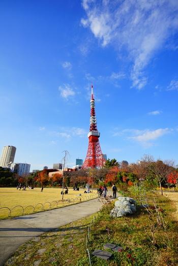 敷地から東京タワーを眺めることができる、芝公園。都営三田線芝公園駅から徒歩3分です。