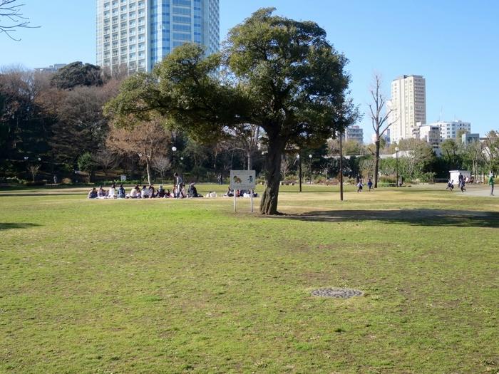 親子で楽しく公園内を探検する「自然発見探検隊」が開催されることも。その他、葉っぱを使ったエコバッグ作りなどのイベントも開催されています。
