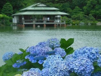 梅雨の季節をしっとり歩こう。五感で楽しむ「清澄白河さんぽ」のすすめ