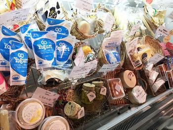 ソフトクリームで休憩したら、お店をゆっくりのぞいてみませんか?東京では限られたものしか販売されなかった北海道産ナチュラルチーズを、もっと多くの人に食べてもらいたいとオープンしたお店。  大きなホールのチーズやヨーグルトなど、豊富なラインナップが魅力です。好みや食べ方などをスタッフの方に相談しながら選ぶのも楽しいですよ。