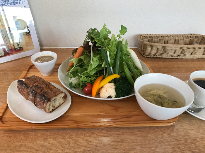 オーガニック野菜がたっぷりいただけるランチもおすすめ。梅雨のじめじめで食欲がない日でも、サラダなら食べやすいですよね。これだけのお野菜を食べたら、パワーチャージできそうですね。