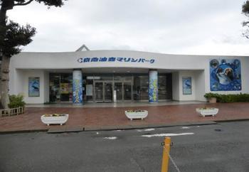 三崎港から少し戻った場所にあるのが「京急油壺マリンパーク」。規模的には大きくありませんがとっても見やすくほっこり癒される水族館ですよ。
