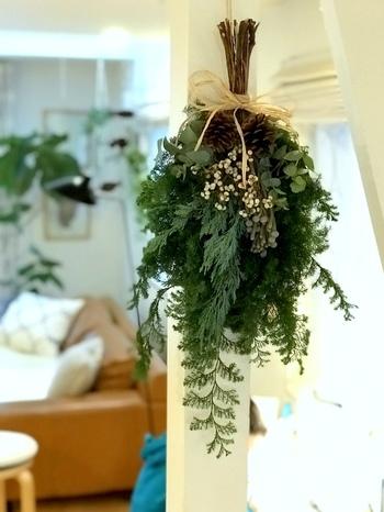 クリスマスシーズンに多く流通するサツマスギ。こんもりとしたシルバー味を帯びた葉は、リースやスワッグにと大活躍です。ユーカリやブルニア、ブルーアイスなど、ドライにできる花材と組み合わせて。