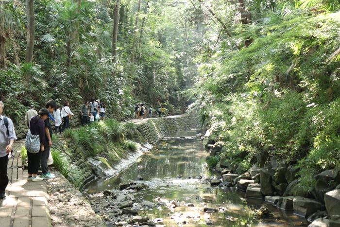 緑豊かな自然と、川のせせらぎ…癒されますね。休日には、散策に出掛ける方も多いようですよ。
