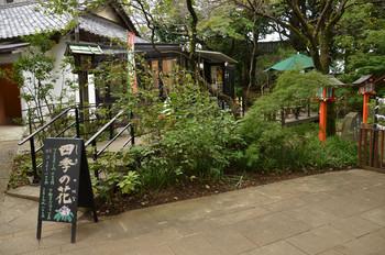 等々力不動尊境内にある「四季の花」は、ご本堂へ向かう参道右側にあります。