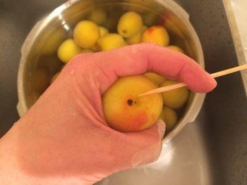 大きな鍋やボウルにたっぷり水を張って、静かに梅の実を入れてアクを抜きながら竹串等でヘタを取り除きましょう。 また、梅の実に生えている産毛も、やさしくこすり洗いをして取り除いておきます。