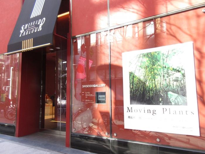 銀座8丁目にある資生堂ギャラリーは、資生堂パーラーの入っているビルの地下1階にあります。1919年にオープンした現存する日本最古の画廊といわれています。