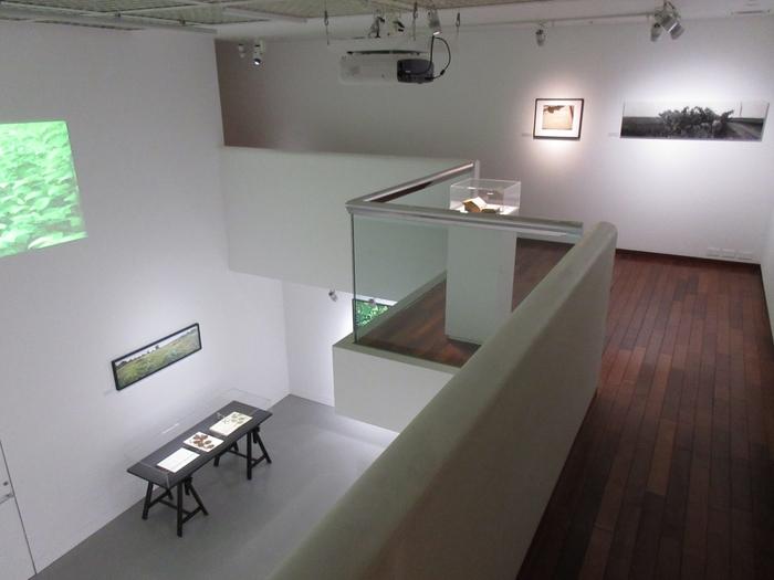 """2001年にリニューアルし、展示室は天井高5m超のゆとりのある空間。""""新しい美の発見と創造""""を活動理念としていて、現在は主に現代美術の展示を行っています。"""