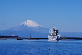 神奈川県三浦半島の先端にある、三浦・三崎は美味しい魚介類や野菜が楽しめ、雄大な富士山が見れたり、自然が作り上げた美しい絶景を見ることができたりとまさに大人の遠足を楽しむことができるスポットです。