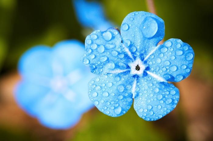 洗濯もできないし、出かけるのもおっくうになってしまう雨。そんなレイニーデイは思い切って「今日はなんにもしない日!」と決めて割り切って、うんとのんびり過ごすのもいいかもしれませんね。  これからは雨の日が楽しみになってしまいそう?!