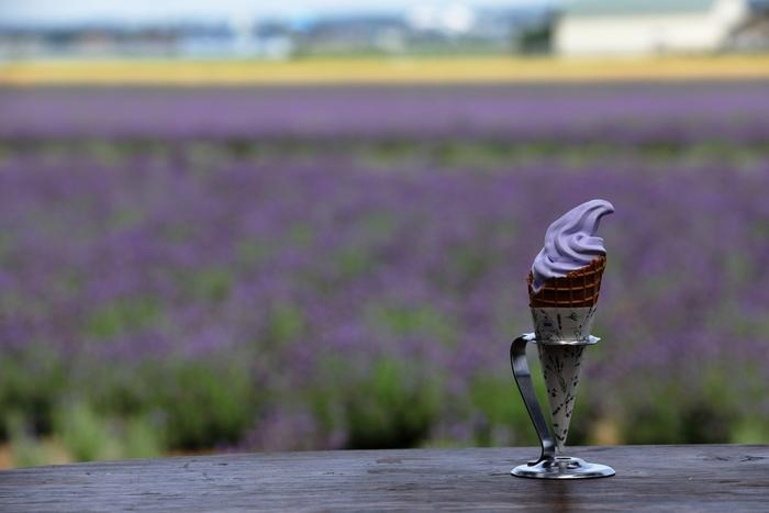 ファーム富田で人気の味といえば、ラベンダーソフトクリーム。ラベンダーイーストでは、バニラとホワイトチョコレートを加えた『ラベンダーホワイトチョコレートソフトクリーム』を限定で提供しています。ここでしか味わえない味と香りをぜひ楽しんでみては?
