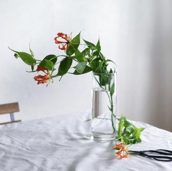 花を飾るとき、たとえば、玄関やリビング、床の間...、客人を迎えるためのものと考えていませんか。そうすると、少し気負ってしまうかもしれないけれど、もっと自然に、花を日常の風景に加えてみませんか。そう、ごく普通のいつもの場面の中に。