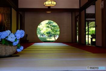 都心から約1時間で訪れることができる古都鎌倉。この時期の鎌倉といえばやはり「アジサイ」が有名です。