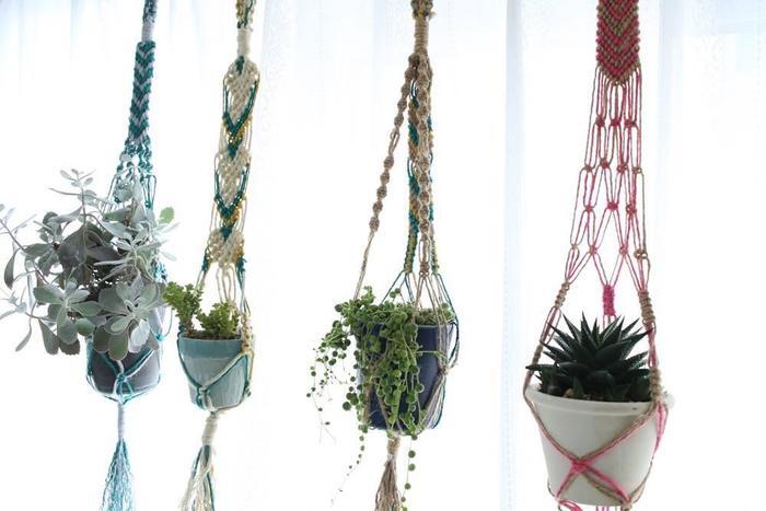 夏は、カラフルな紐で編むのもおすすめです。いろんな植物を並べるのも楽しい!お部屋にリズムと彩りをプラスしてくれます。
