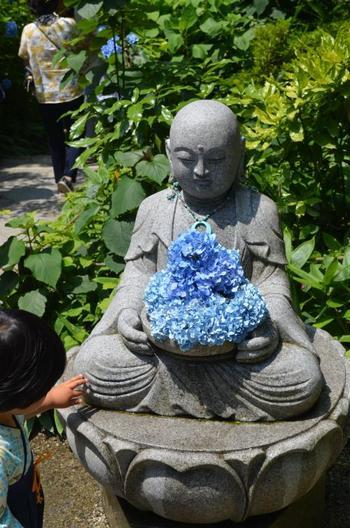 いつも優しく微笑んでくれている花想い地蔵にもアジサイが。アジサイの見頃は6月上旬から下旬にかけて。明月院ブルーのアジサイは雨に濡れればより青が濃く見え幻想的です。