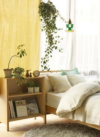 長く伸びたツル部分もインテリアになるアイビー。狭い寝室なら、天井から吊るして飾ってみるのもいいですね。日の当たりづらい場所でも元気に育ってくれるのも頼もしいです。