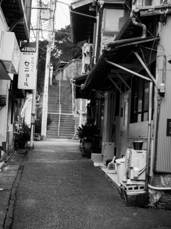 今回は、ゆっくりのんびり大人の遠足気分を味わえる「三浦・三崎満喫ガイド」をご紹介したいと思います。