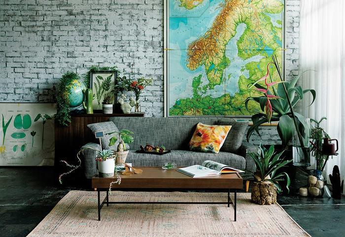雑貨屋さんにあるちょっと珍しい植物を、ソファーの周りにディスプレイするように置くことで、ひとクセあるおしゃれなリビングに。