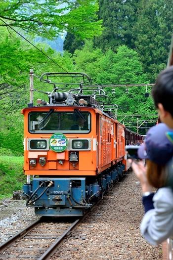 富山県の黒部峡谷といえば、人気の観光スポット。雪の季節は雪のため運行していませんが、春は花、夏は新緑、秋は紅葉と、四季折々の風景を楽しむことが出来ます。には、「トロッコ列車」は朱色の可愛い屋根付きの機関車。宇奈月(うなづき)駅からけやき平駅間を、深い峡谷を縫うようにして走っています。 狭い線路幅を走るため、とにかく迫力は満点!