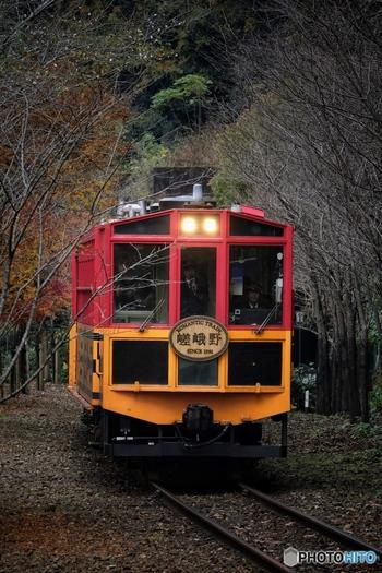 """京都を代表する人気の観光地""""嵯峨野・嵐山""""。渡月橋がかかる大堰川の上流、保津川に沿って走る「嵯峨野トロッコ列車」は、JR山陰線の複線化により使用されなくなった線路を、トロッコ嵯峨駅からトロッコ亀岡駅までを走ります。春夏秋冬、四季折々の保津狭の景色を楽しむために、毎年、多くの観光客が訪れます。 列車は単線を往復して運行。駅はトロッコ亀岡駅、トロッコ保津峡駅、トロッコ嵐山駅、トロッコ嵯峨駅の4つ。どこから乗車しても料金は均一です。"""